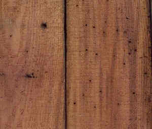 Typical appearance of resawn chestnut.